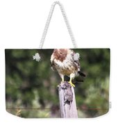 Hungry Hawk Weekender Tote Bag