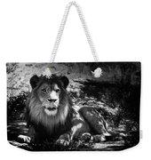 Hungry Lion Weekender Tote Bag