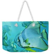 Hunting For Plankton, A School Weekender Tote Bag