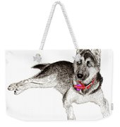 Husky With Blue Eyes And Red Collar Weekender Tote Bag