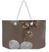 Hydrangea Arborescens Dry Flower Head In Winter Weekender Tote Bag