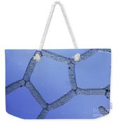 Hydrodictyon Sp. Algae, Lm Weekender Tote Bag