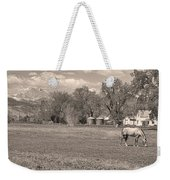 Hygiene Colorado Boulder County Scenic View Sepia Weekender Tote Bag