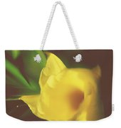 I Have Been Waiting For You Weekender Tote Bag