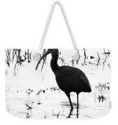 Ibis Pintail Drive Cameron Prairie Nwr Weekender Tote Bag