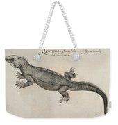 Iguana, 1585 Weekender Tote Bag