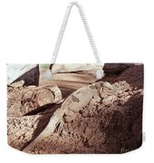 Iguana In The Sun Weekender Tote Bag