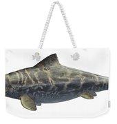 Illustration Of A Prehistoric Weekender Tote Bag by Sergey Krasovskiy