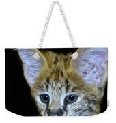 Im All Ears Weekender Tote Bag