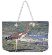 Immature Tricolored Heron Standing At High Tide Weekender Tote Bag
