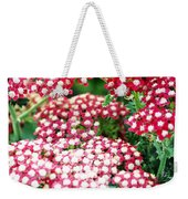 In A World So Small Weekender Tote Bag