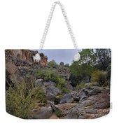 In The Arroyo   Weekender Tote Bag by Ron Cline