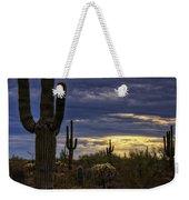 In The Shadow Of The Saguaro  Weekender Tote Bag