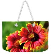 Indian Blanket Weekender Tote Bag