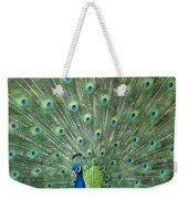 Indian Peafowl Pavo Cristatus Male Weekender Tote Bag
