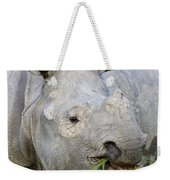 Indian Rhinoceros Grazing Kaziranga Weekender Tote Bag
