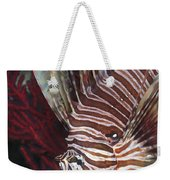 Indonesian Lionfish On A Wreck Site Weekender Tote Bag