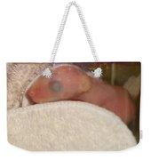 Infant Weekender Tote Bag