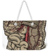 Inferior Mesenteric Artery And The Aorta Weekender Tote Bag