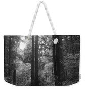 Into The Wood Weekender Tote Bag