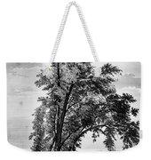 Iowa: Council Bluffs, 1855 Weekender Tote Bag