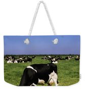 Ireland Friesian Cattle Weekender Tote Bag