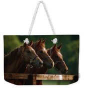 Ireland Thoroughbred Horses Weekender Tote Bag