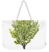 Isolated Flowering Pear Tree Weekender Tote Bag