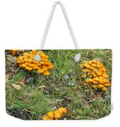 Jack Olantern Mushrooms 15 Weekender Tote Bag