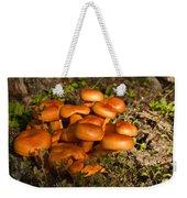 Jack Olantern Mushrooms 30 Weekender Tote Bag