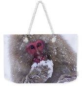 Japanese Snow Monkey Weekender Tote Bag