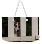 Johnny And The Picket Fence Weekender Tote Bag