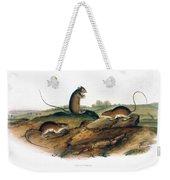 Jumping Mouse, 1846 Weekender Tote Bag