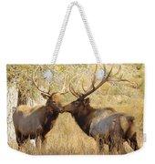 Junior Meets Bull Elk Weekender Tote Bag by Robert Frederick