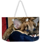 Just A Big Kitten Weekender Tote Bag