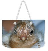 Just Hatched Weekender Tote Bag