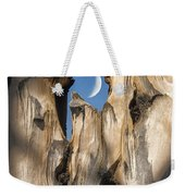 Just Passing By Weekender Tote Bag