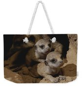 Just Waking Up, Two Meerkat Pups Weekender Tote Bag