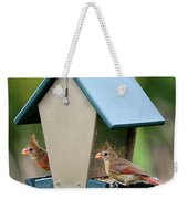 Juvenile Cardinals On Feeder Weekender Tote Bag