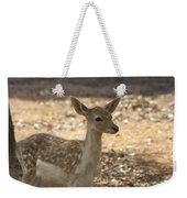 Juvenile Deer Weekender Tote Bag