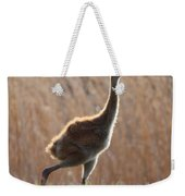 Juvenile Sandhill In The Marsh Weekender Tote Bag