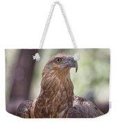 Juvenile Sea Eagle Weekender Tote Bag