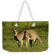 Kangaroo Male Weekender Tote Bag by Bob Christopher