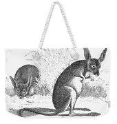 Kangaroo Rat Weekender Tote Bag