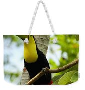 Keel-billed Toucan Weekender Tote Bag