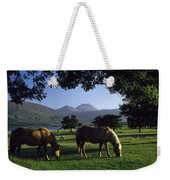 Killarney,co Kerry,irelandtwo Horses Weekender Tote Bag