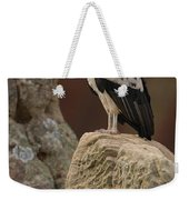 King Vulture Sarcoramphus Papa Perched Weekender Tote Bag by Pete Oxford