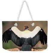 King Vulture Sarcoramphus Papa Sunning Weekender Tote Bag by Pete Oxford