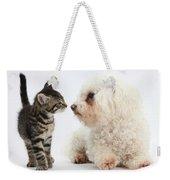 Kitten & Pup Confrontation Weekender Tote Bag