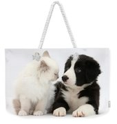Kitten And Border Collie Pup Weekender Tote Bag